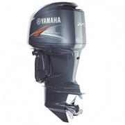 Yamaha F225XA Outboard Motor